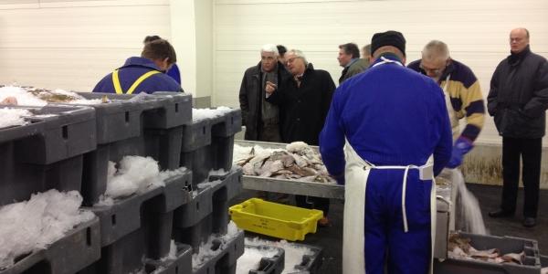 Raad bezoekt visserijcluster in Stellendam