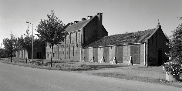 Provincie stelt 4 ton beschikbaar voor chicoreifabriek Ceres in Ouddorp