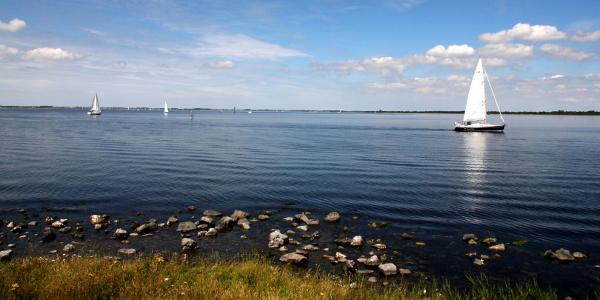 10 miljoen voor waterkwaliteit Grevelingen en Volkerak-Zoommeer