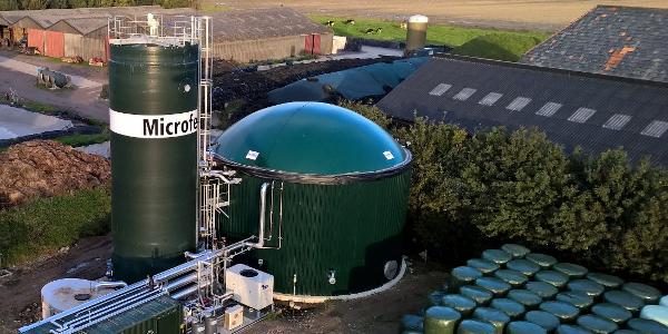 Uniek in Nederland: Van koeienmest tot aardgas!