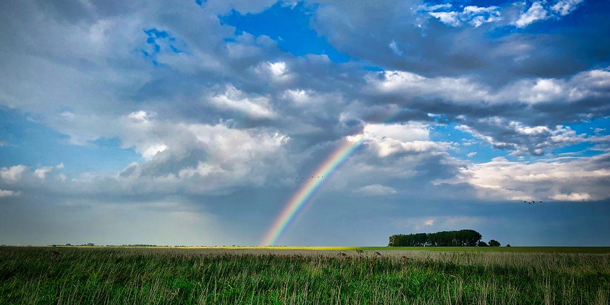 Regenboog laat zien: Iedereen telt mee!