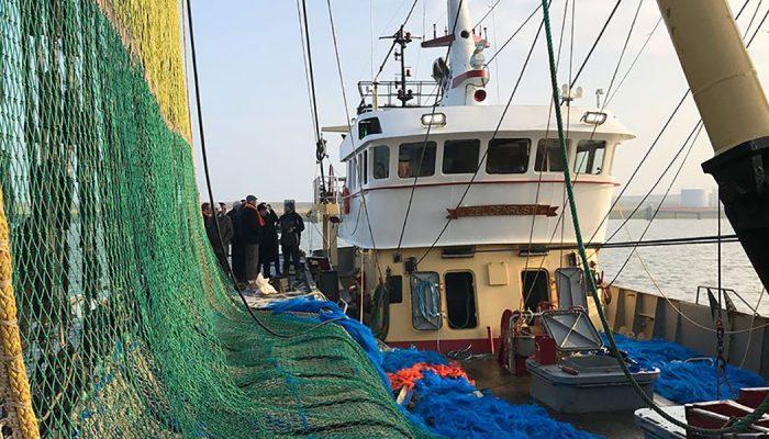Reactie college op besluit tot gedeeltelijk verbod op pulsvisserij
