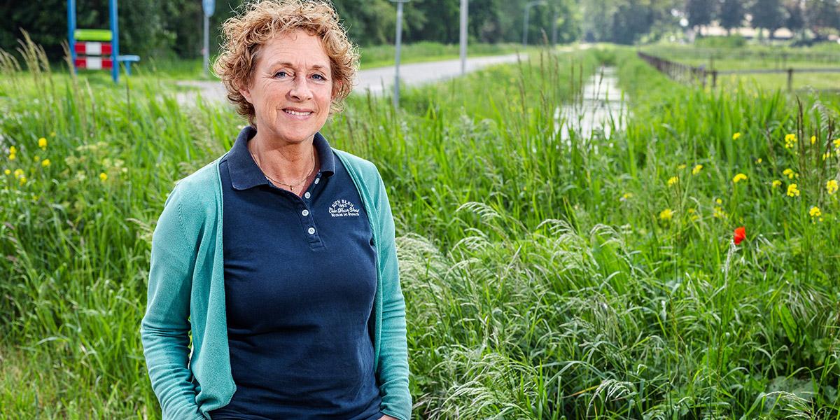 Waterschap wil beeldbepalende bomenrij behouden
